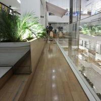 Raspagem sem pó em pisos de madeira